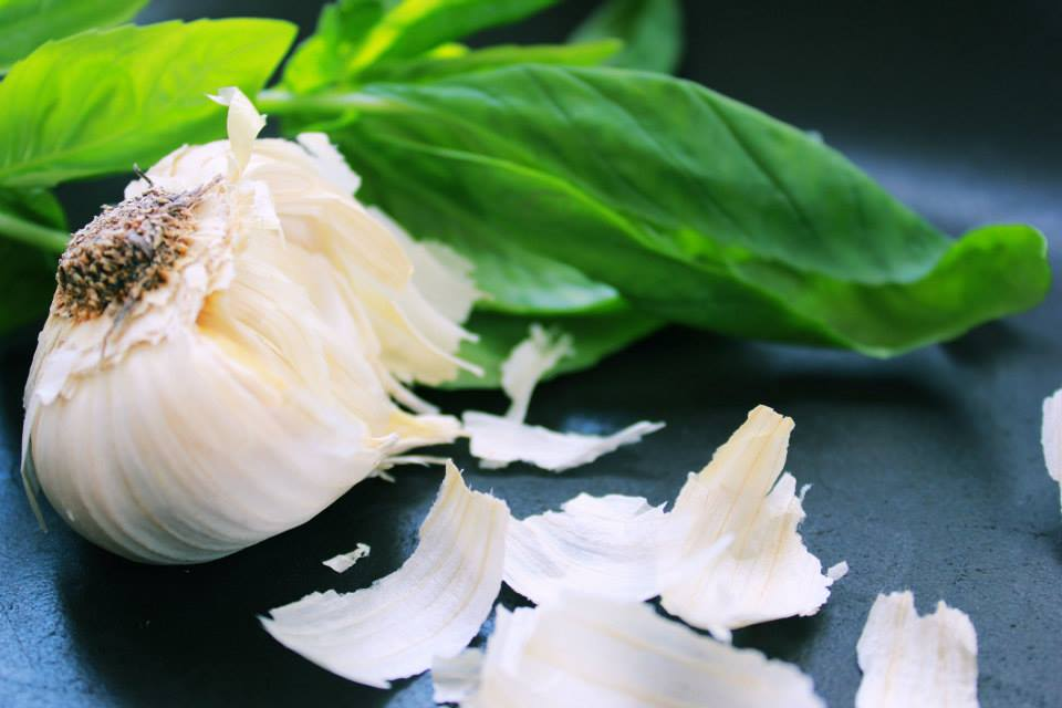 garlic basil
